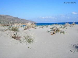 Katsounaki: une belle plage solitaire avec sable & des eaux bleues-vertes peu profondes